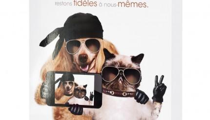 carte-de-voeux-entreprise-2016-selfie